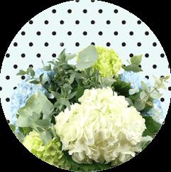 Anniversary Flowers Bayswater